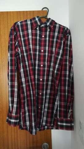 Camisa Marca Polo