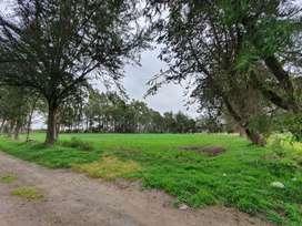 Vendo Terreno Agrícola en Latacunga atrás Brigada Patria, 47.000 M2. $250.000