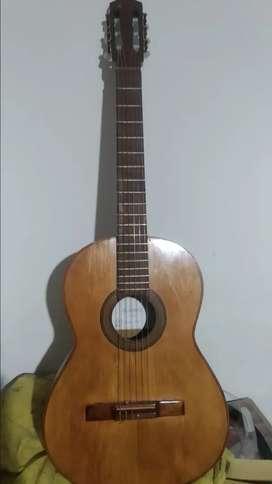 Guitarra criolla medio concierto
