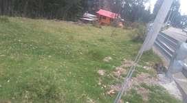 Venta de Terreno de 4.000 mts. en Paccha Cuenca