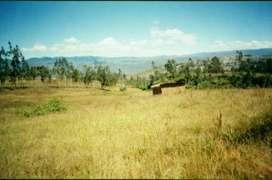 Se vende terreno en Chachapoyas