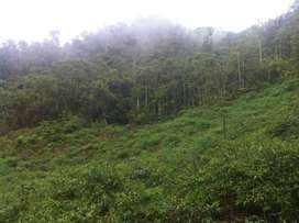 Venta de TErreno en HUANCABAMBA, Huancabamba, Oxapampa
