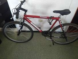 Bicicleta Segunda