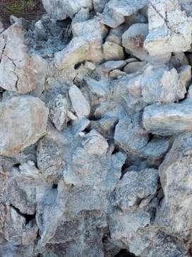 En venta concecion minera no metalico piedra de yeso