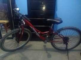 Bicicleta Personalizada modelo cisne rojo