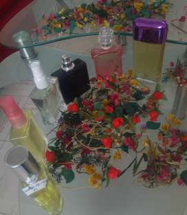 Perfumeria para dama y caballeros