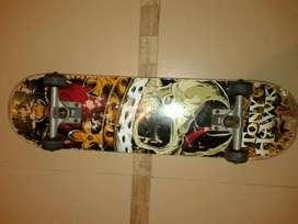 Skate Birdhouse Tony Hawk