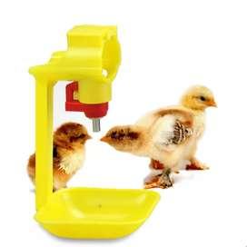 Bebedero pollos