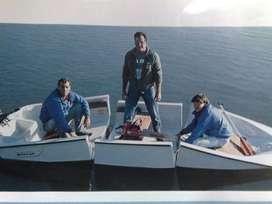 Liquido Boston Whaler Usa 11 Pies a Reac