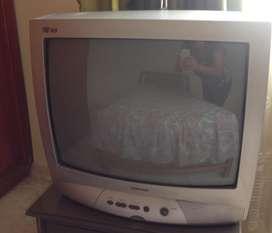 Televisor Samsung Pro Visión 24