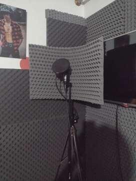 Se vende panel acustico profecional para grabación
