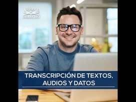 Transcripción de textos, audios y datos, elaboración de artículos, ensayos y monografías, correción de estilo