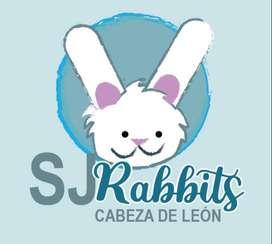 CONEJOS CABEZA DE LEÓN. Disponibles