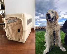 Jaula perro grande apta para viajes en avión - kennel transportador
