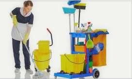 Tengo 30 años busco empleo como empleada domestica limpieza o niñera