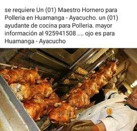 (01) Maestro Hornero.
