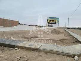 Venta de lotes Legia Tacna