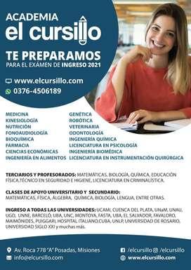 CLASES PARTICULARES DE APOYO ONLINE . INGRESO UNIVERSITARIO 2021. VARIAS CARRERAS