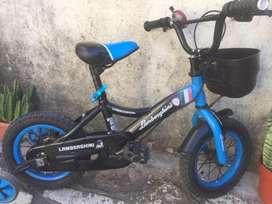 Bicicleta lamborgini rodado 12