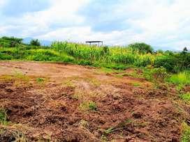 Venta de lote de terreno con riego ubicado en el sector Trapichillo en Catamayo-Loja