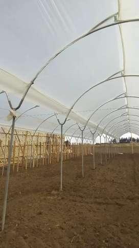 Construccion y mantenimiento invernaderos
