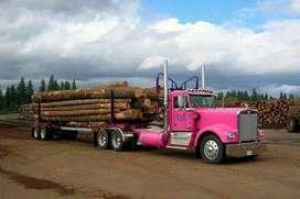 Empresa necesita persona que tenga conocimientos en Logistica de transporte de carga