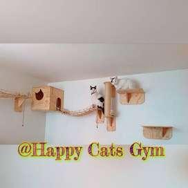 Gimnasio para Gatos Happy Cats Gym