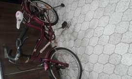 Bicicleta rodado 20 con rueditas ex estado