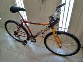 Bicicletas Winner Racing todo terreno usadas