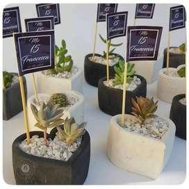 Souvenirs Mini Macetas Geometricas con cactus y suculentas