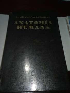 Anatomía Humana tomo IV año 1968