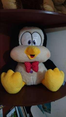 Pinguino pelanas