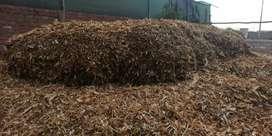 ¡Vendo Forraje seco o verde (Panca/Chala, Picada), ! , para todo tipo de ganado vacuno y otros .
