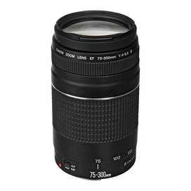 Lente Canon EF 75-300mm f/4-5.6 III 31%