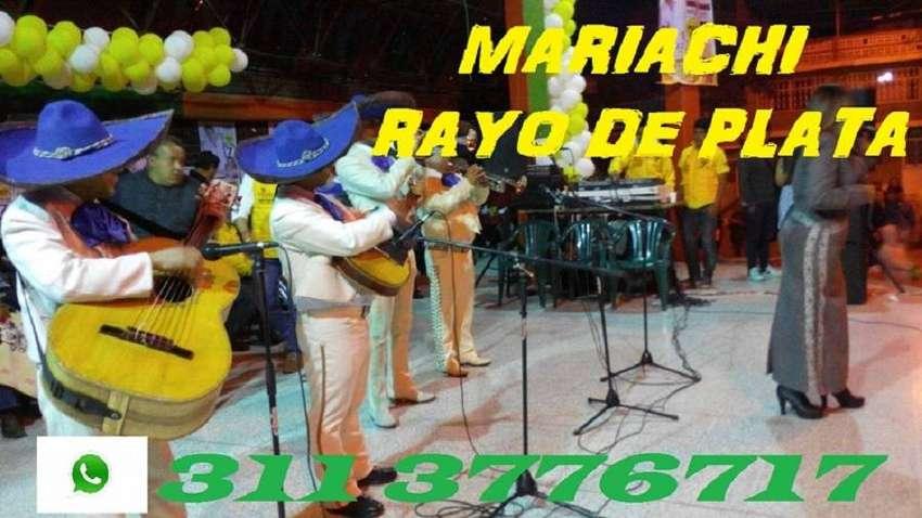SE LE TIENE LA SERENATA, mariachis Bogota,  económico 0