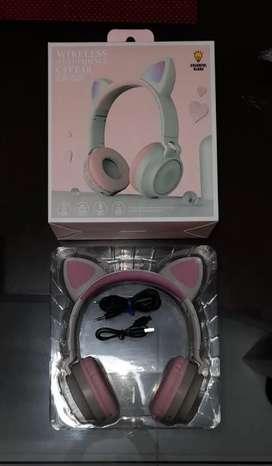 Audífonos de gato nuevos!