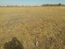 Vendo terreno en Pilar Cordoba