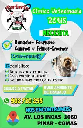 Se Solicita Gromeer Peluquero felino - canino