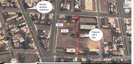 Ocasión Terreno Pisco - cerca a Aeropuerto 920 m2