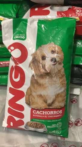 VENTA BALANCEADO RINGO CACHORRO