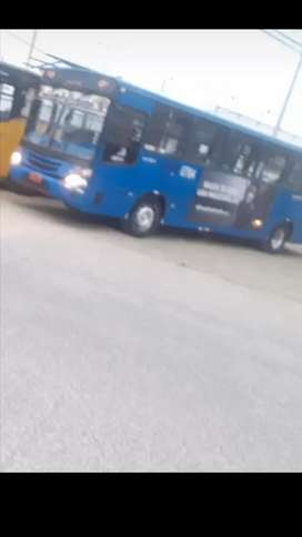 Bus volskwagen 2004