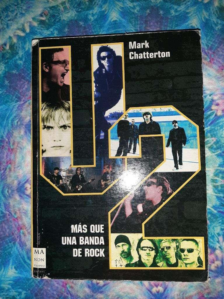 Libro U2 más que una banda 0