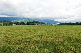 Venta Terreno Industrial Has - Pozo de Agua - Tambillo / m² , $35