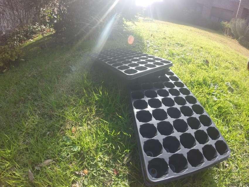 Bandeja de siembra propagadora, germinadora 50 celdas 0