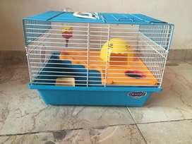Haula para hamster