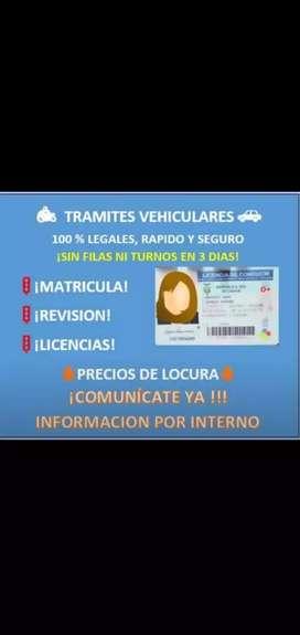 Trámites legales , licencias, matrículas, revisiones