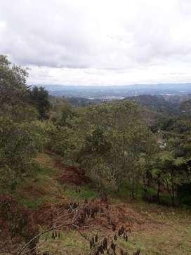 Lote Santa Elena a 10 minutos del parque hacia Ríonegro, antes del peaje.