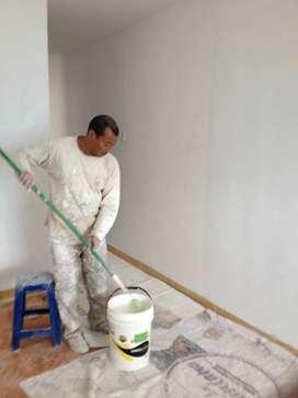 pintor de casas en comas