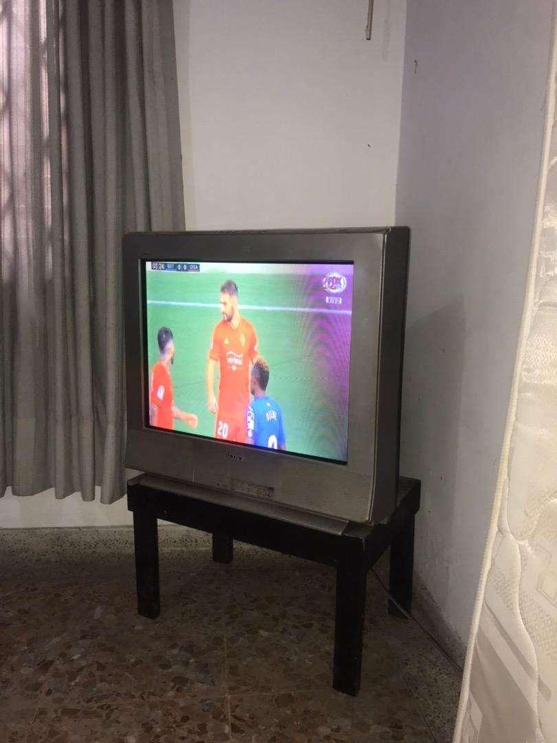 TV SONY 31 pulgadas 0