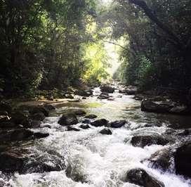Zona de camping y pasadias en reserva natural Amazilia en pozo azul.